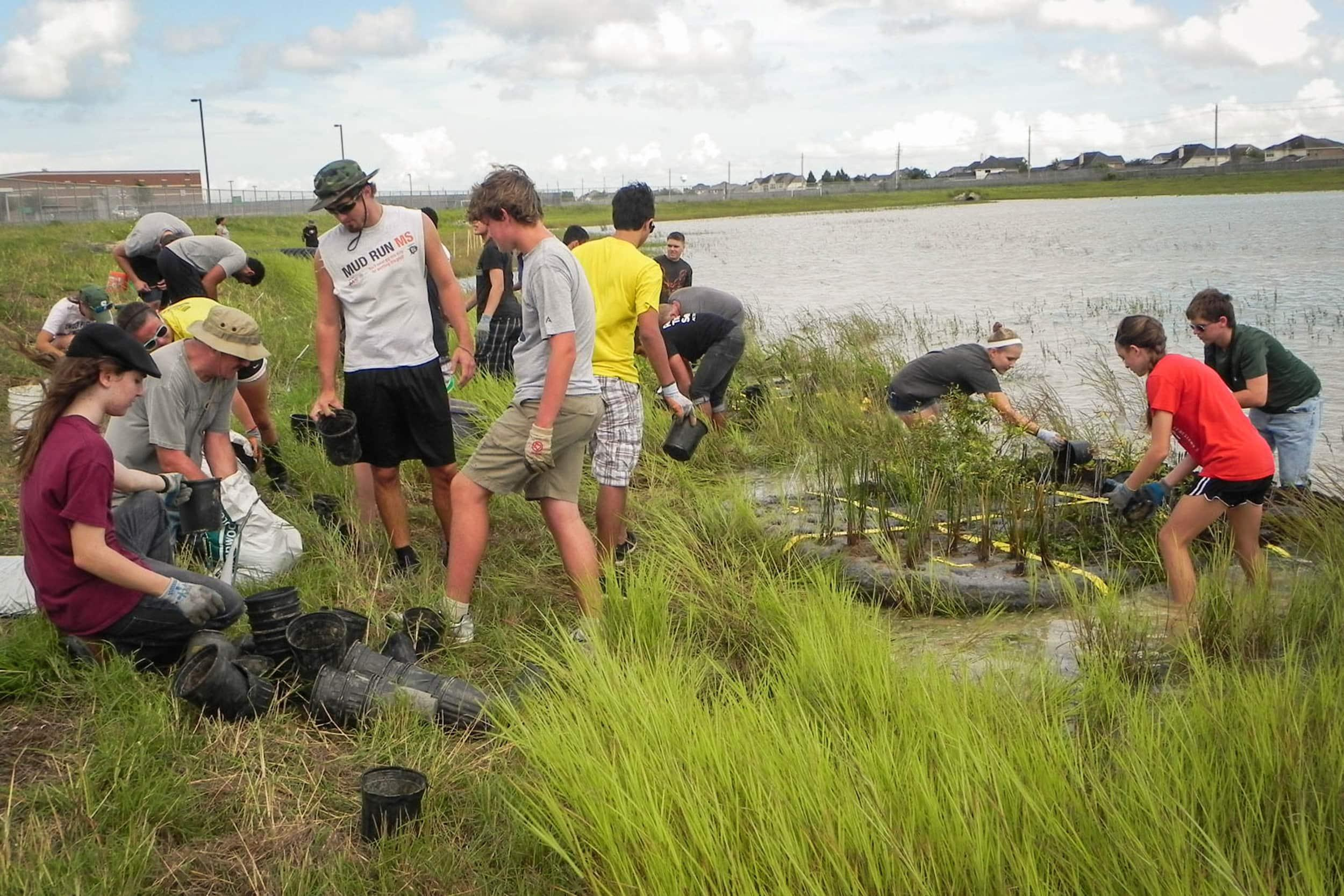 Students and volunteers replant the floating wetlands