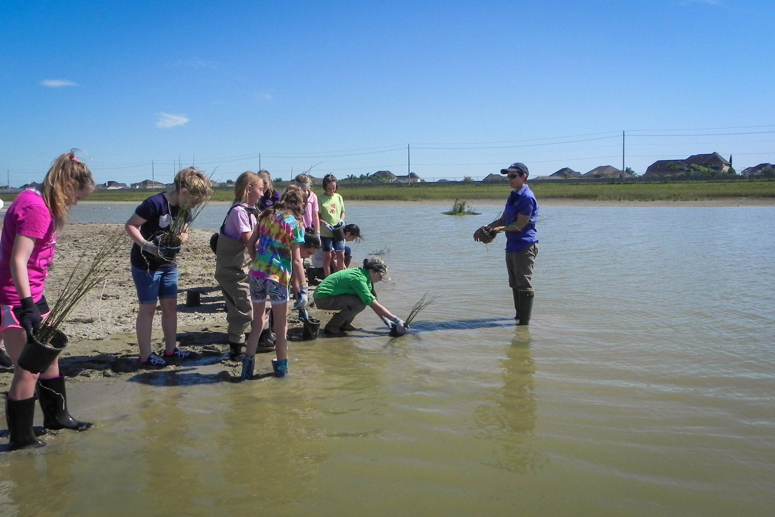 Students and volunteers plant the perimeter of the pond