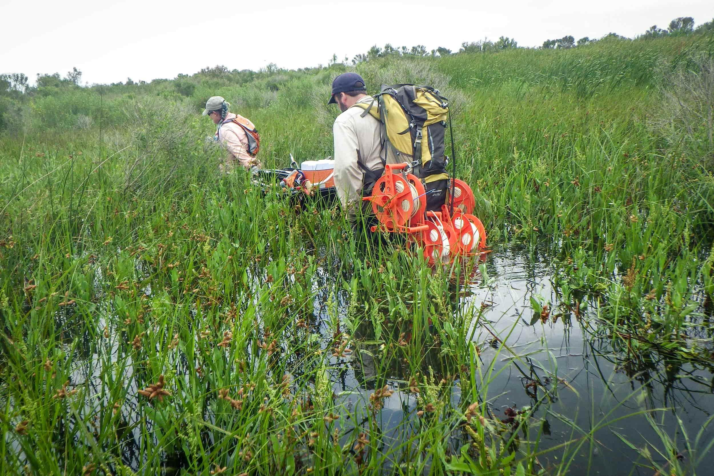 Mandi Gordon, research associate, and James Roundtree, wetland technician, traverse the flooded landscape of a NWCA site in Galveston County, Texas