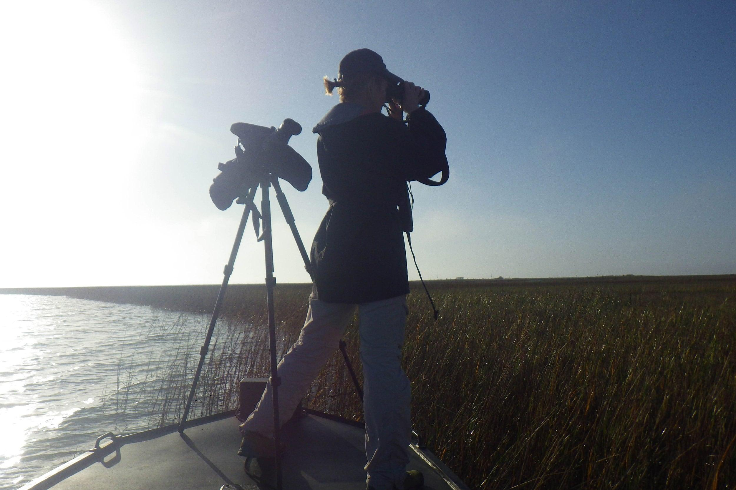 Anna Vallery, graduate assistant, conducts a bird survey