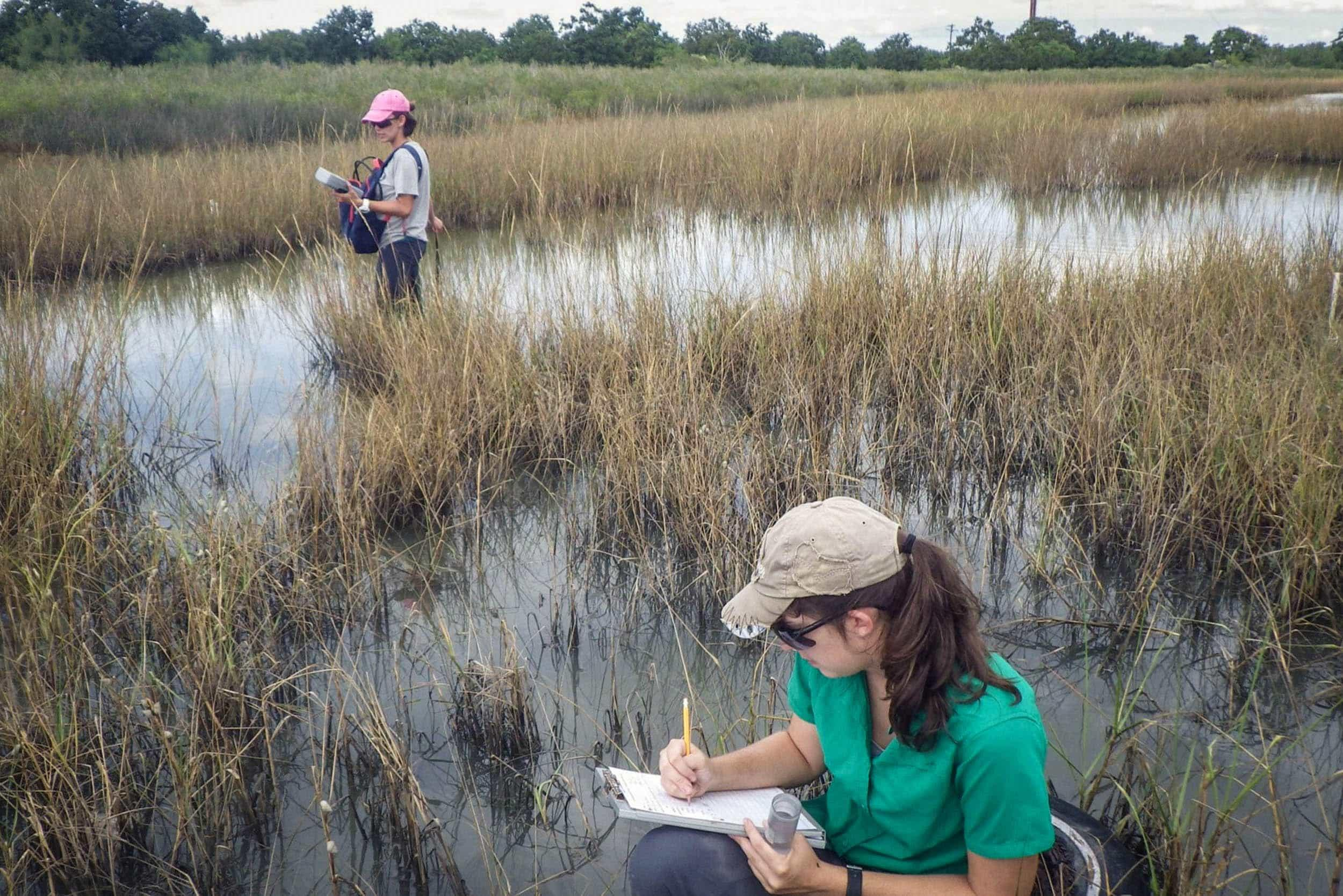 Graduate research assistants collect water quality data