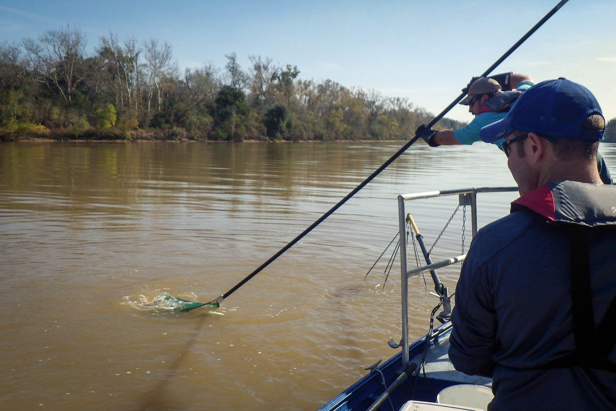 Sampling the Brazos River