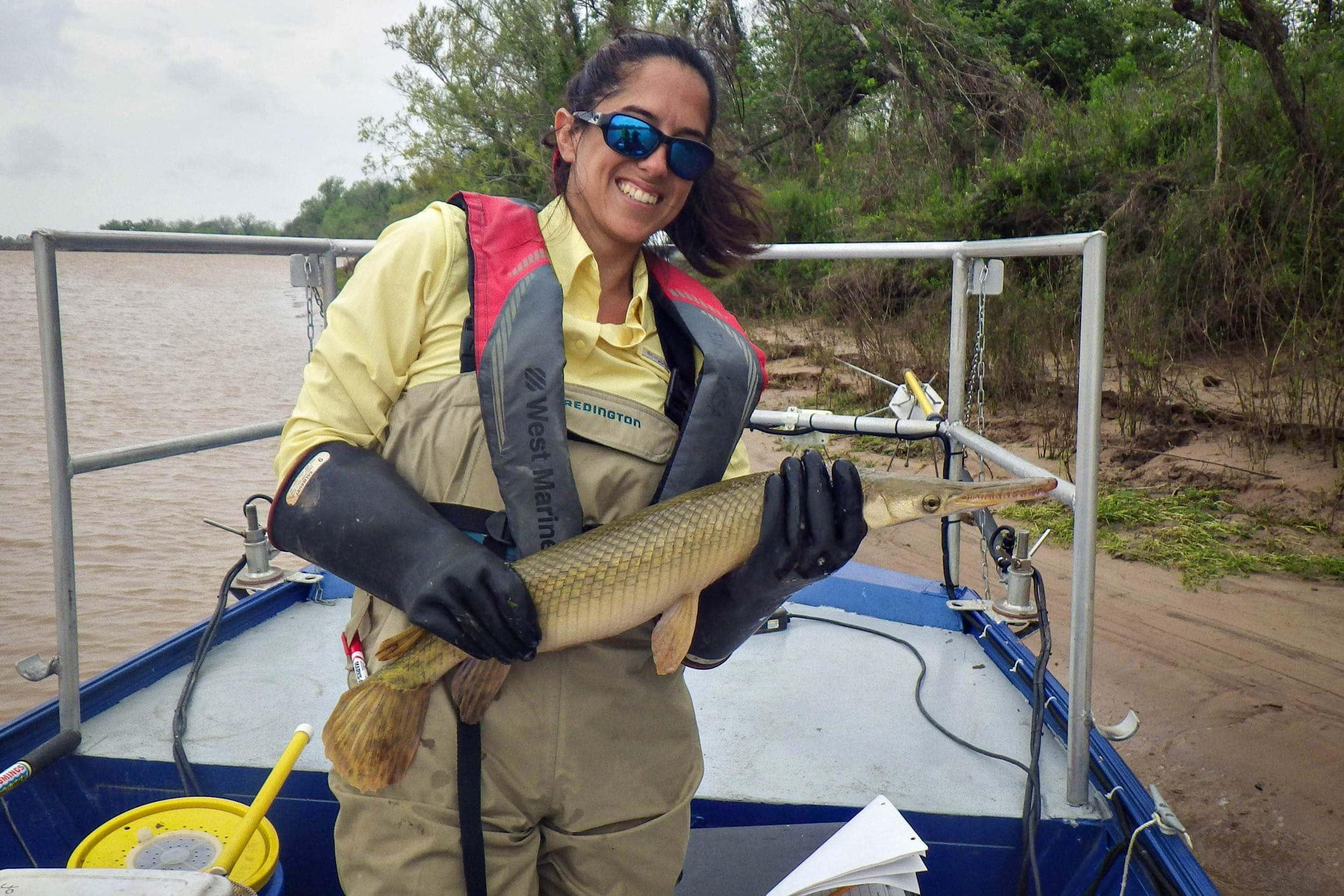 Kristi Fazioli holds a spotted gar collected while electrofishing