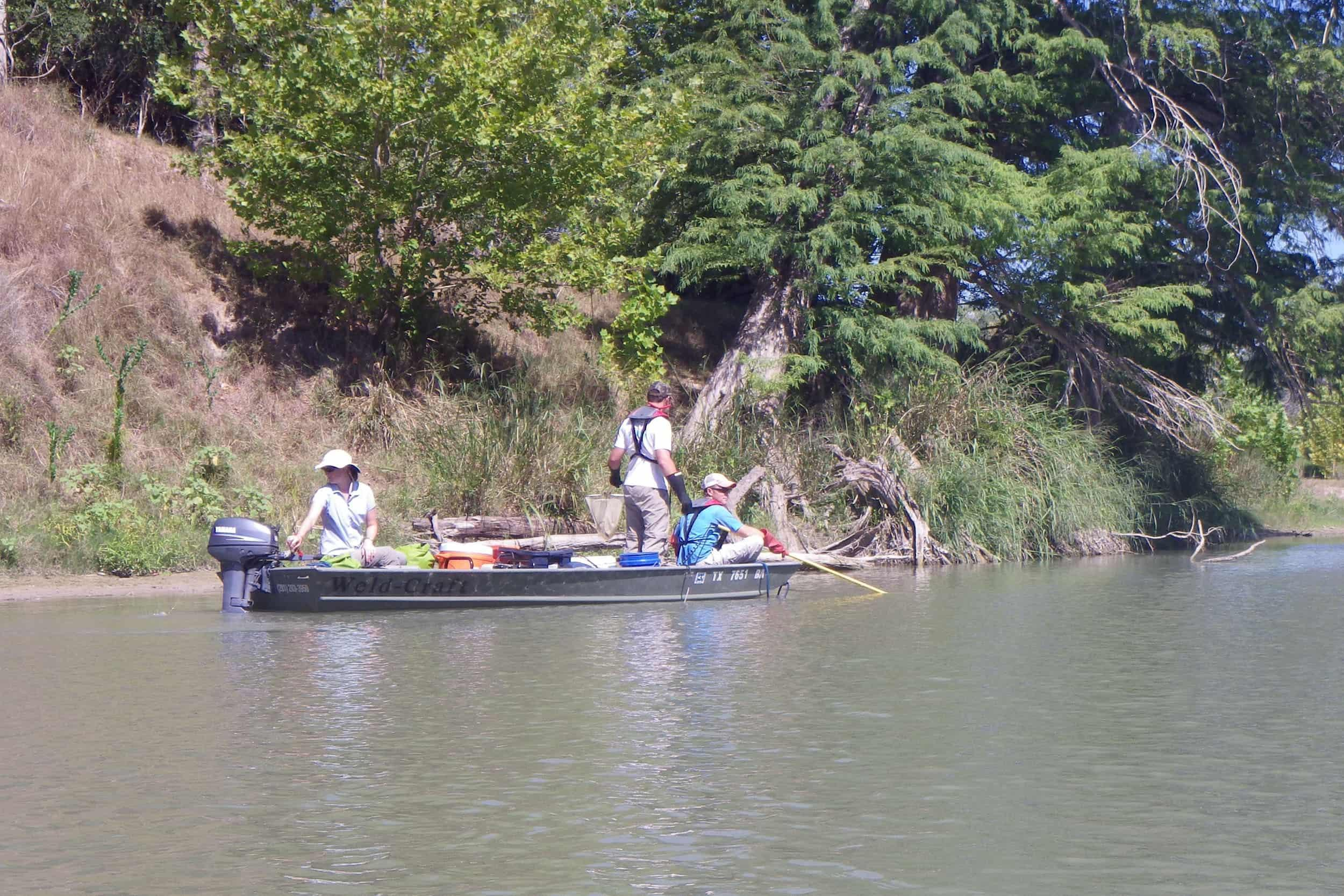 Jenny Oakley, environmental scientist, navigates the Guadalupe River while Michael Lane, research assistant, and Stephen Curtis, aquatic scientist, electroshock
