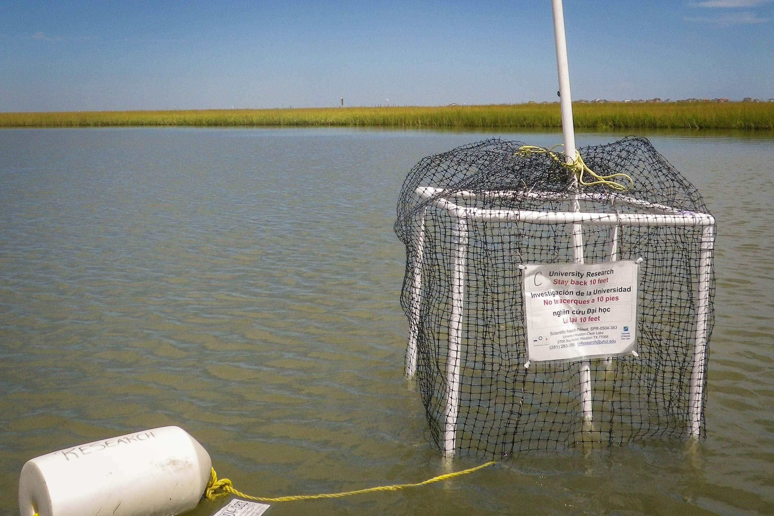 Modified crab trap deployed in open water