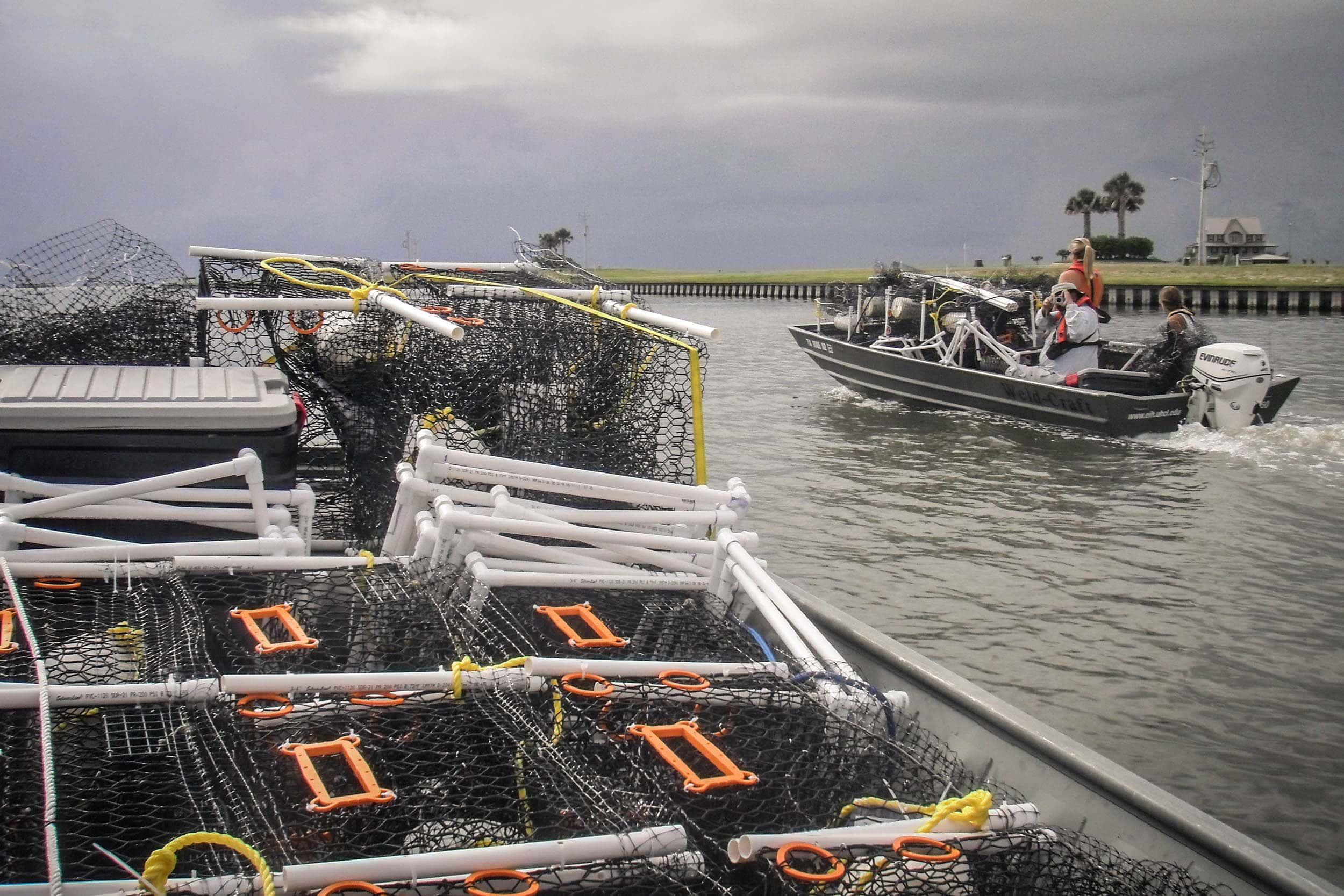 With boats fully loaded, EIH's crew heads out to deploy crab traps