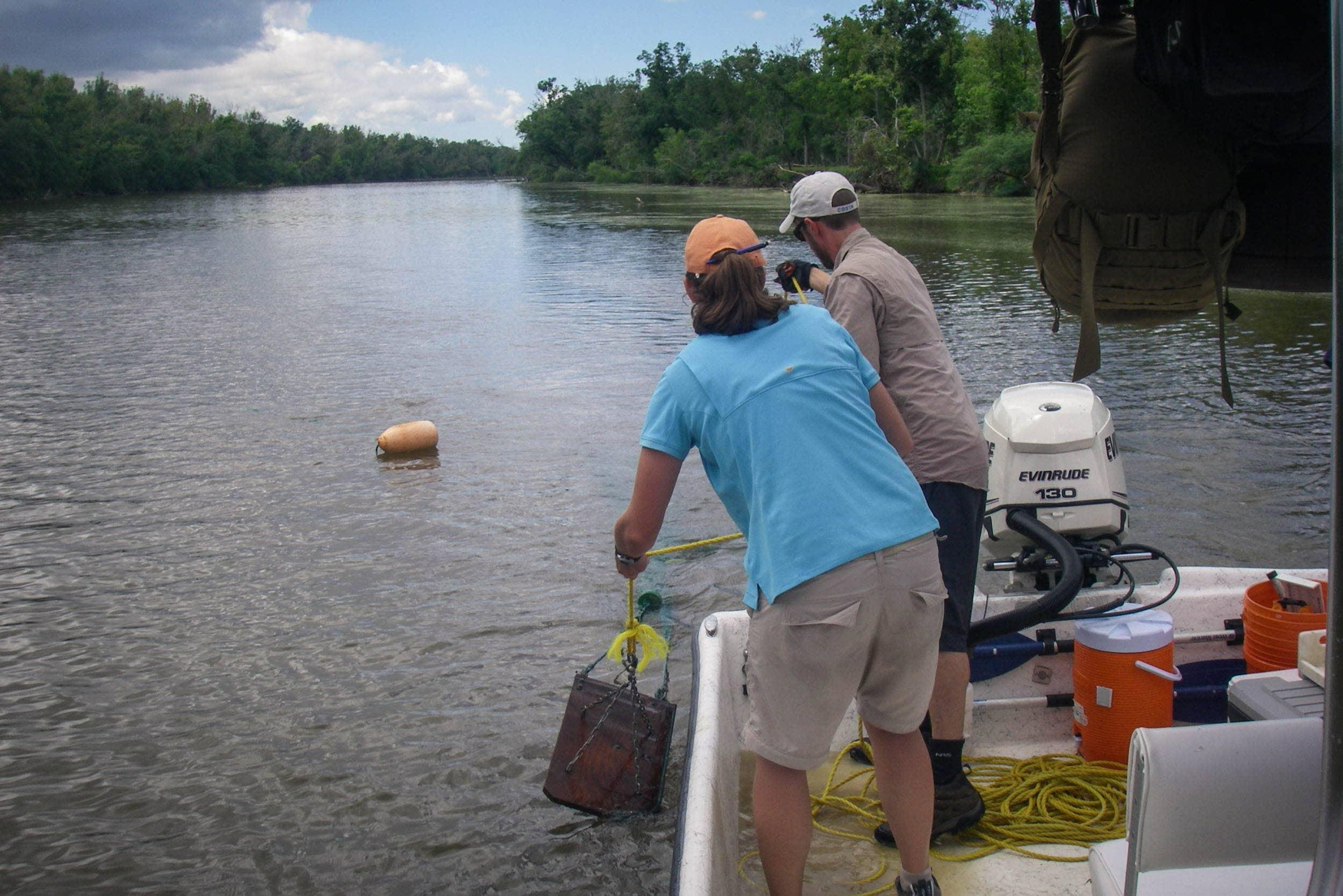 Brazos Estuary Aquatic Community Assessment.