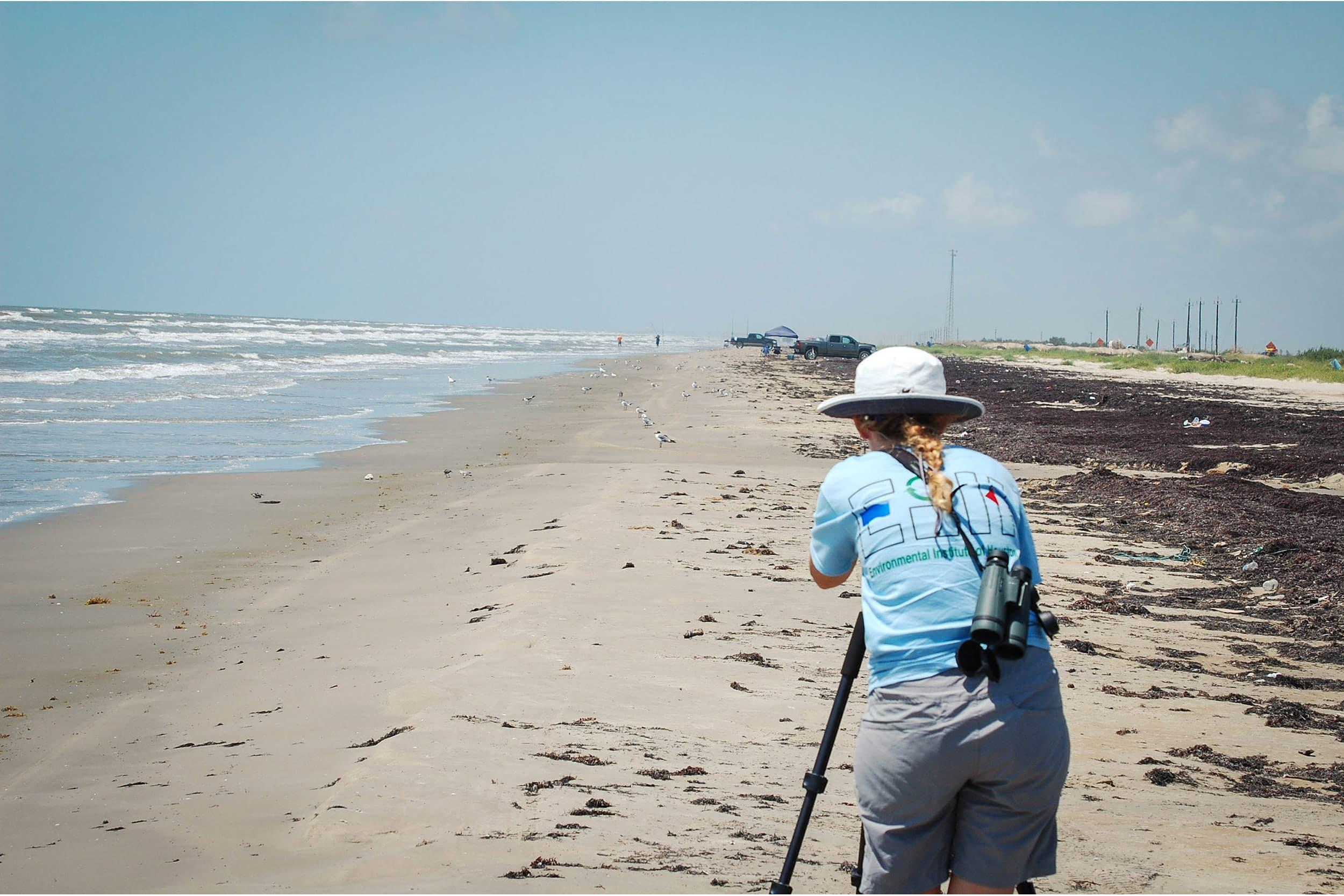Kristen Vale, research associate, uses a scope to record data on a piping plovers on Follets Island.