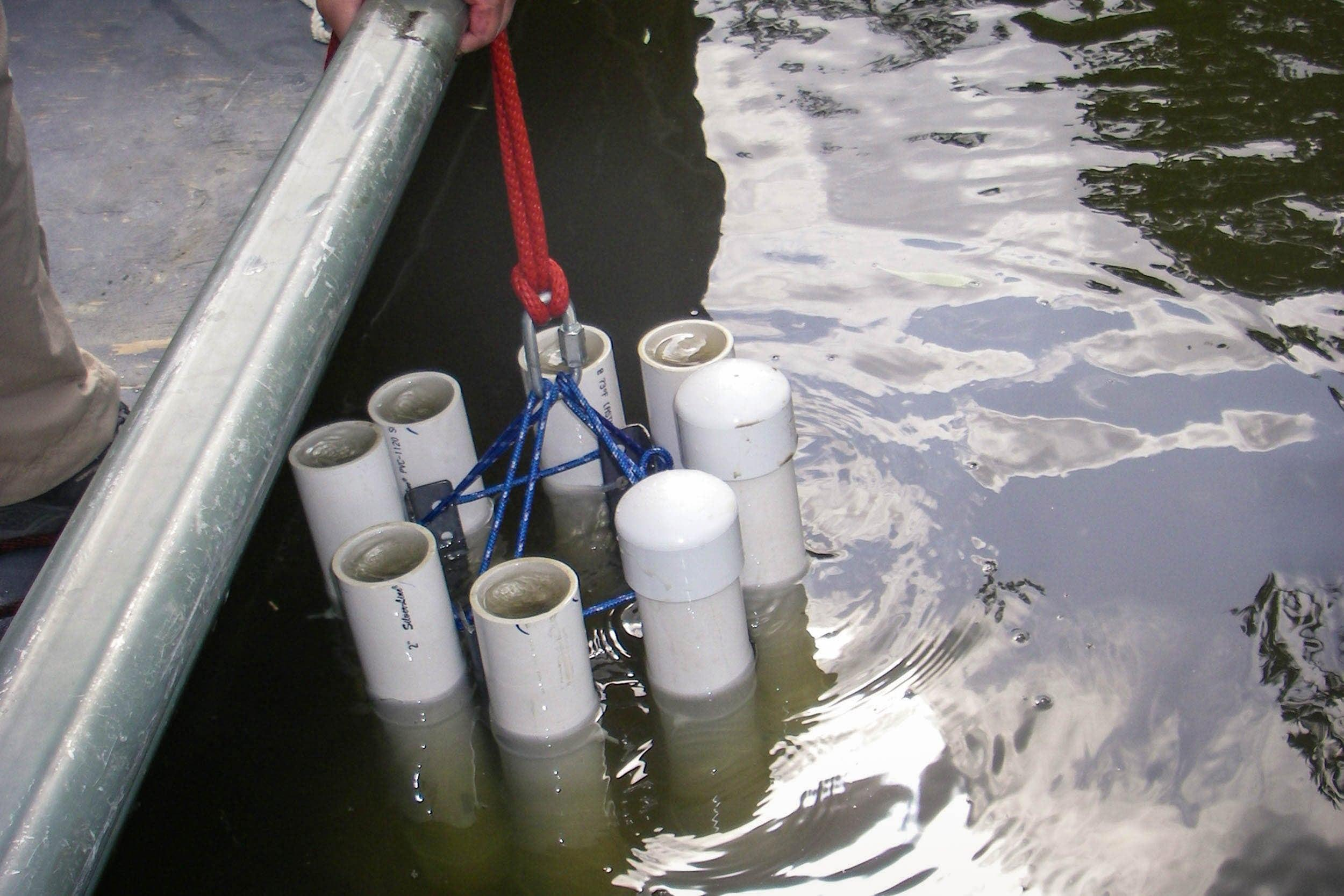 Alternative shallow water sediment sampler used at site 1 during the study.