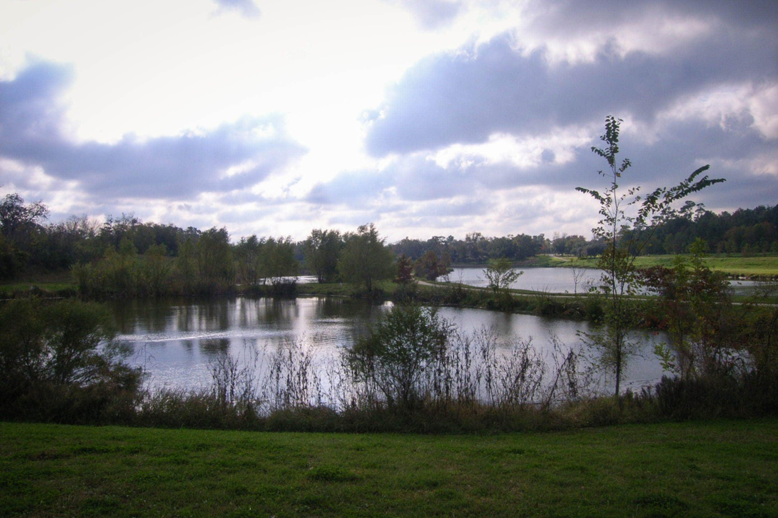 Ponds at Mason Park and Brays Bayou (right)