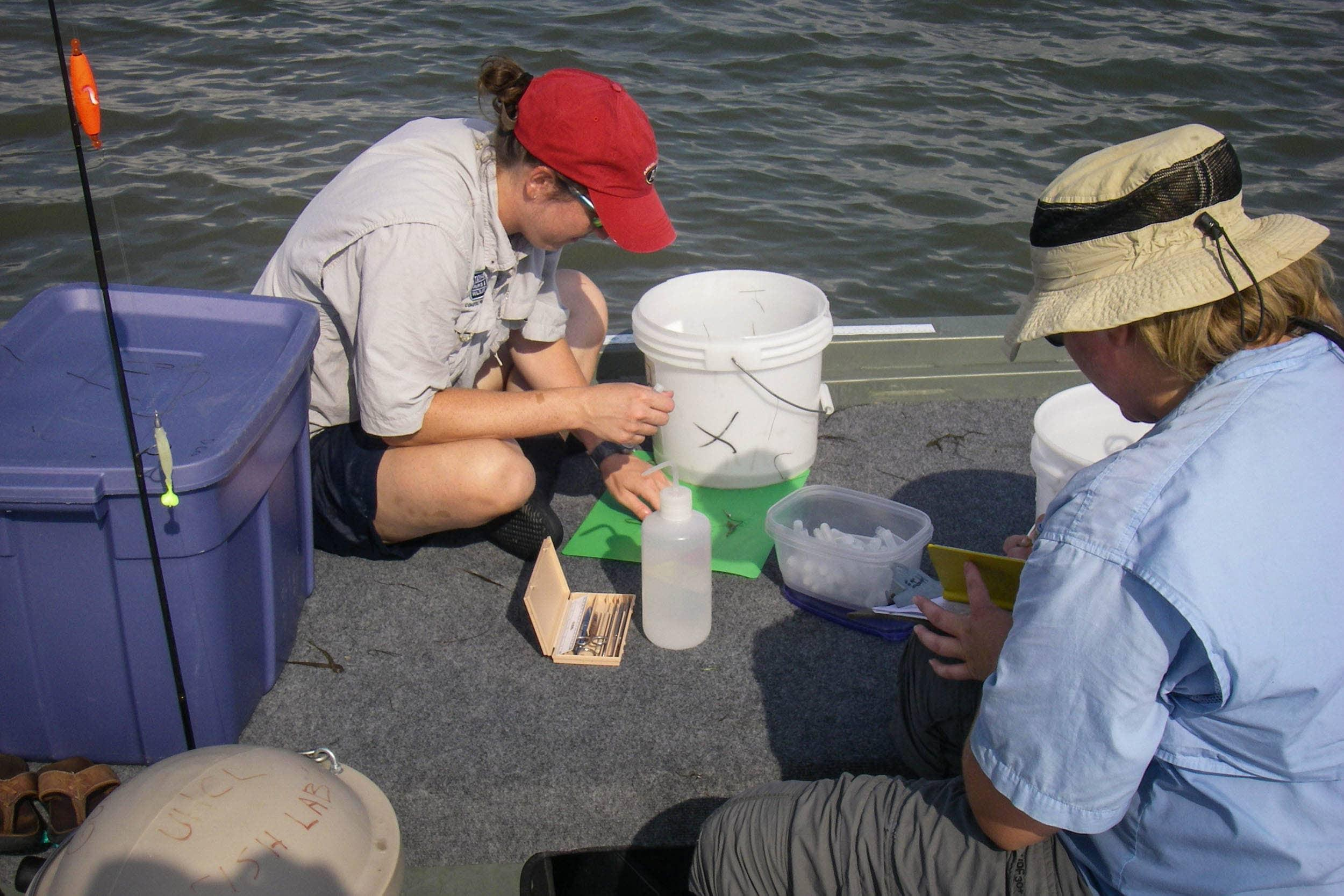 Danielle Crossen, research assistant, and Dianna Ramirez, research associate, process samples collected in Christmas Bay