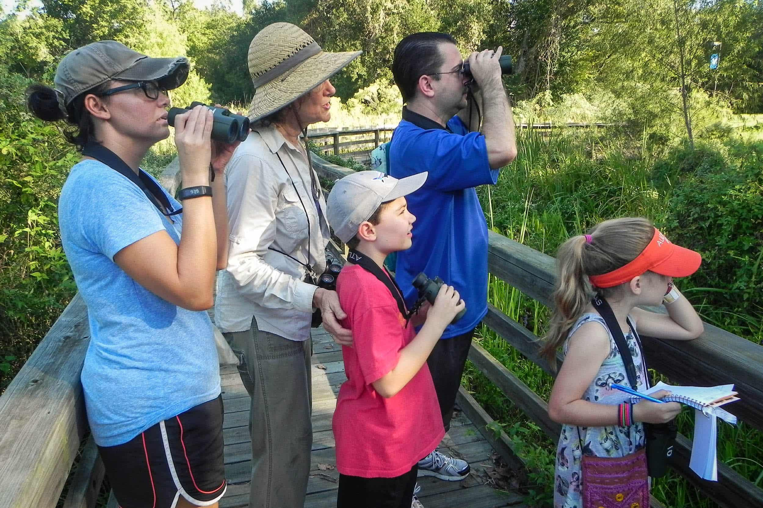 Birding at the UHCL wetlands