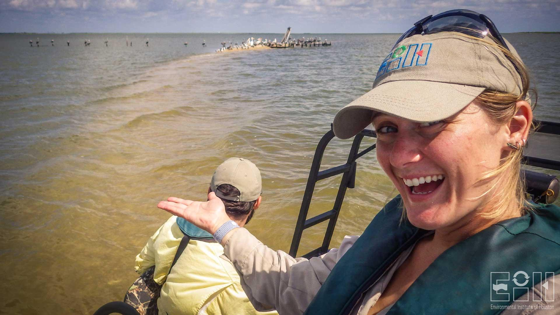 Assessment of Shorebird Populations in Galveston Bay Using Conventional and UAV Techniques